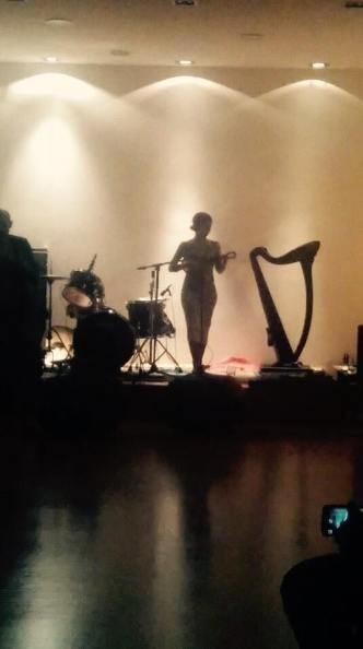live at Green Room, Zabok Croatia October 2015